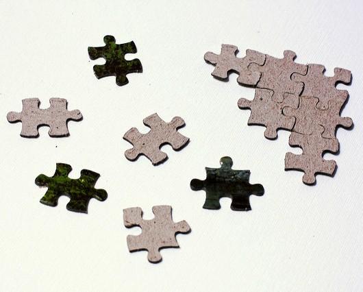 Detoxification is like a Life Jigsaw